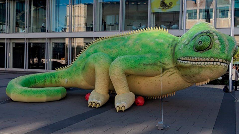 inflatable chameleon