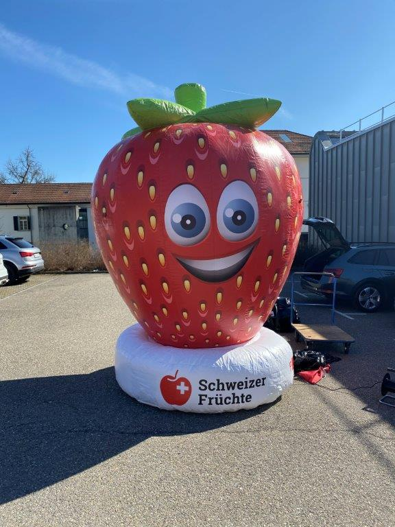 Aufblasbare Erdbeeren – 3m