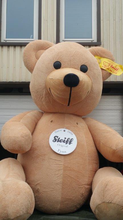Steiff-Teddy