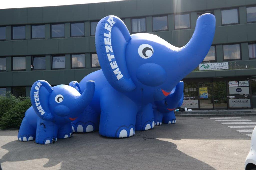 Elefanten 2,5 m und 5 m