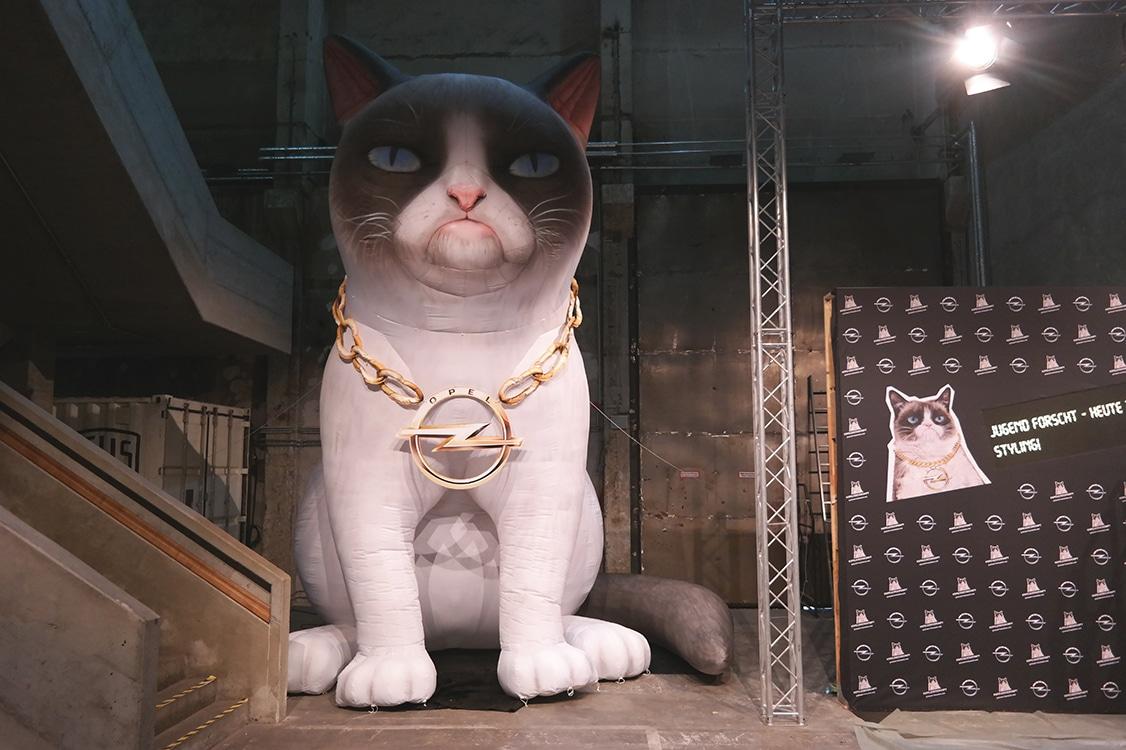 Grumpy-Cat für Opel